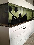 Aquario com movel completo com matriz de discus