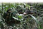 Rede de camuflagem 3d caca e espera