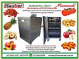 Secadoras de tomates haubermaschinen