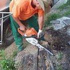 Corte e podas de arvores limpeza de terreno