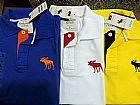 Camisa polo hollister- abercrombie- ralph lauren- tommy frete gratis