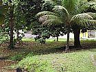 Caetano imoveis 3623-2297 sitio em agro-brasil itaborai