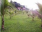 Sitio prox a papucaia caetano imoveis 3623-2297