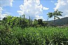 Terreno em itanhaem ref:114200ta
