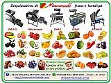 Maquina para hacer pasta de frutas