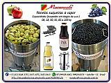 Extratora de suco a vapor capacidade 45,  0 kg de uva