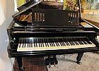 Piano de cauda fritz dobbert 126al