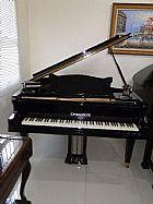 Maravilhoso piano 1/4 cauda chauncey 1.55cm