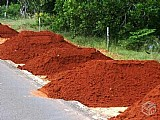 Terra vermelha para gramado