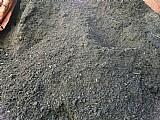 Terra preta pedra branca grama