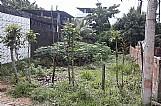Terreno em itaparica bahia