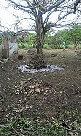 Terreno para construir galp�o,  f�brica e ch�cara