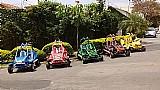 Mini buggy cart 2016