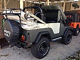 Jeep willys 1966 4x4 revisado