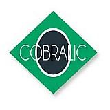 Congresso brasileiro de licitacoes e contratos - cobralic