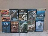 Dvds sobre documentarios reino animais