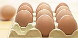 Ovos caipira natural