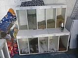 Pet box vendo ou troco parcelo no cartao