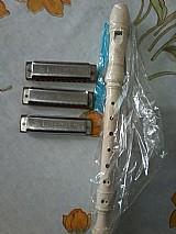 Gaita de boca e flauta