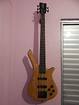 Baixo rock bass fortress warwick 5 cordas com hard case