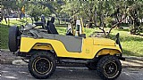 Jeep willys 1975 carroc. fibra