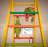 Brinquedo para papagaio- e ave d medio porte escada 1, 20mt