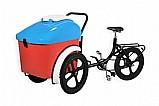 Bicicleta para sorvete e picole