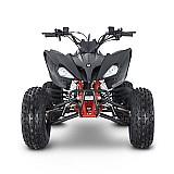 Mini quadriciclo alfa 125cc motor 4 tempos