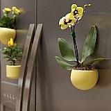 Vaso / cachepot magnetico para plantas