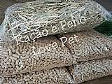 Kit 2kg de feno   1kg de racao nutricobaia
