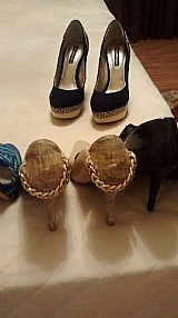 Sapatos marca morena rosa