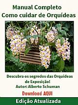 Manual completo como cuidar de orquideas   bonus