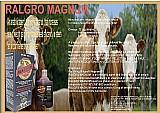 Ralgro magnum (original) importaã§ã£o direta