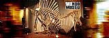 Documentario mundo museu - 6 dvds 36 episodios ótima imagem em hd