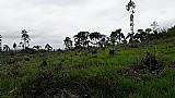 Terrenos para chacaras em taiacupeba
