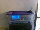Chocadeira de 30 a 40  ovos totalmente  automatica rj