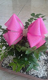 Tiara infantil - laco rosa
