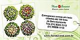 (31) 3024-1113 floricultura entrega coroas de flores cemiterio de carmopolis de minas,  coroas de flores cemiterio de caete,  coroas de flores cemiterio de capim branco,  coroas de flores cemiterio de congonhas mg