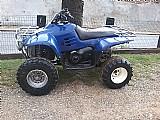 Quadriciclo trail boss 325