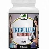Tribullus terrestris 60 caps