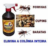 Insetyl spray de 500ml mata a colônia de cupins,  formigas e baratas!