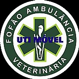 Ambulância veterinária 24 horas
