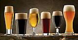 Aprenda como fazer cerveja  artesanal