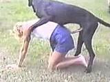 Cachorro comendo mulher de mini saia