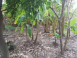 Terreno em hortolândia
