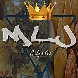 Mlj salgados - vendedora de salgadinhos