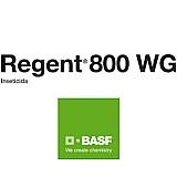 Regent wg 800 1 kg frete grátis  basf