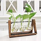 Adeeing criativo planta terrario de vidro recipiente hidropônico decoracao da mesa com suporte de madeira vaso de flores decoracao de casa