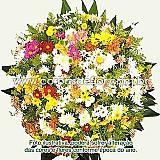 Coroas de flores em funeraria de contagem