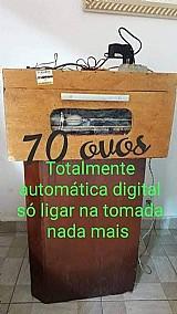 Chocadeira 70 ovos digital  automatica digital rj